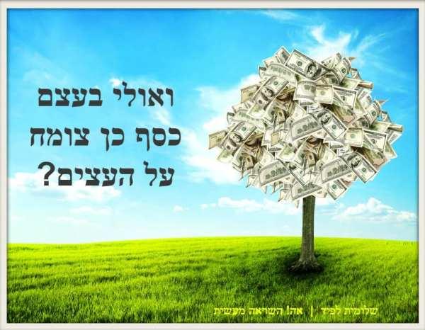 כסף לא צומח על העץ | שלומית לפיד | אה! השראה מעשית
