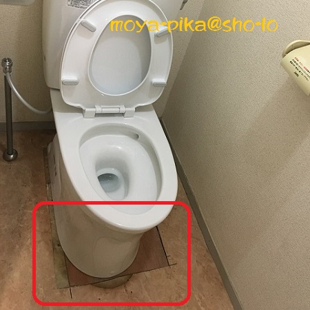 cockroach-toilet-3