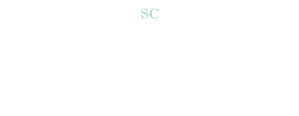 Preservation efforts logo