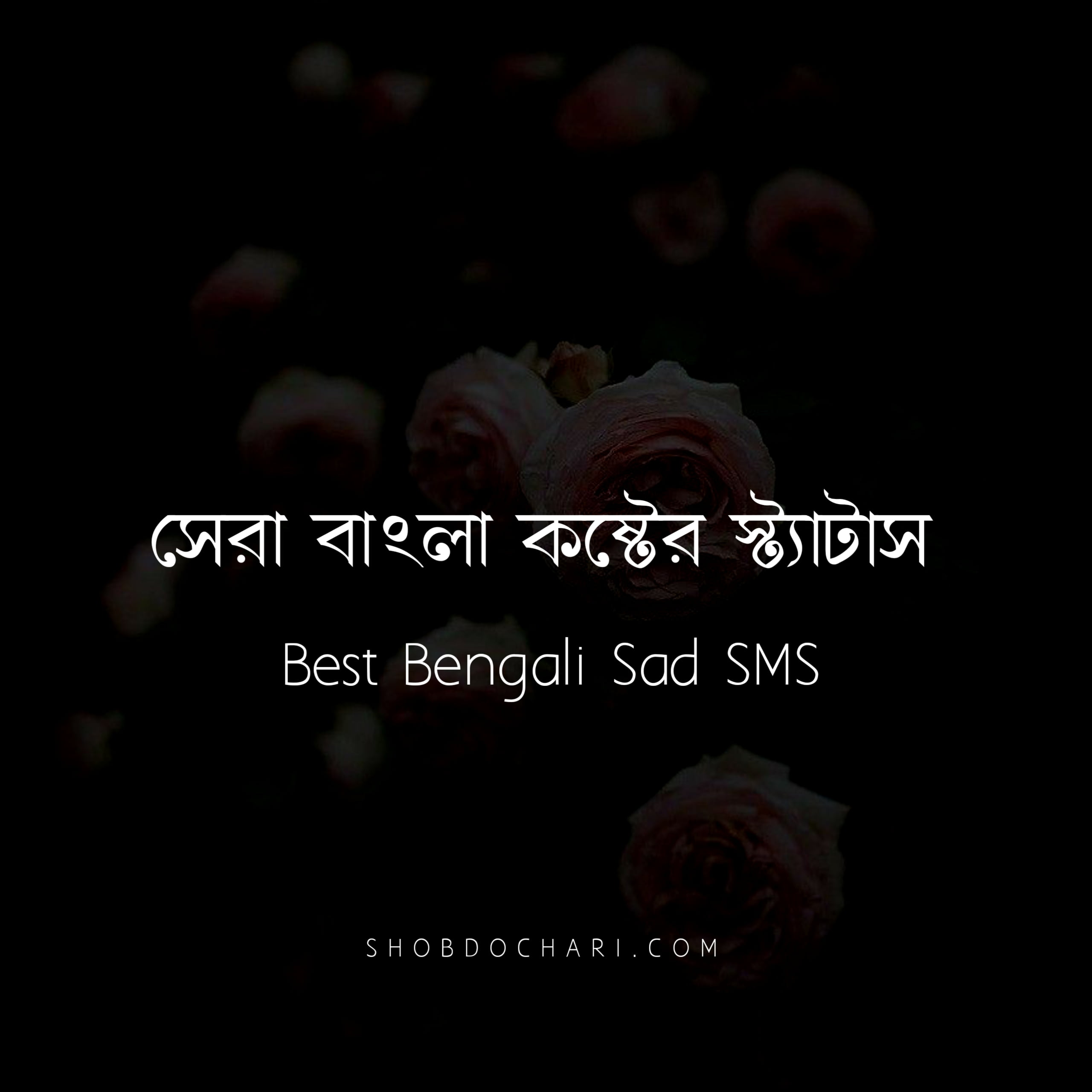 Best Bangla Sad Status