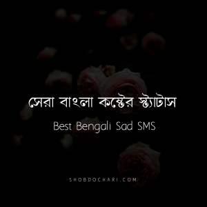 Best Bangla Sad Status