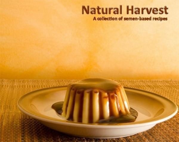 natural-harvest-600x476