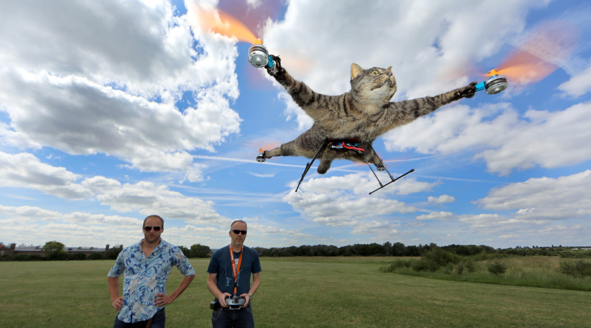 chat-quadrorotor-empaille-volant-helicoptere-shockyou-2