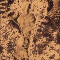Kiss Me Tender by John Waiblinger