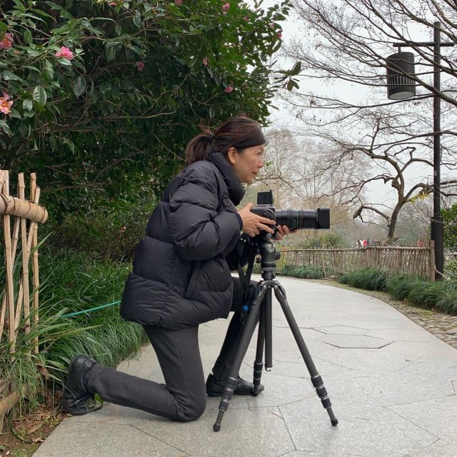 Shoebox Conversations: Chung-Ping Cheng