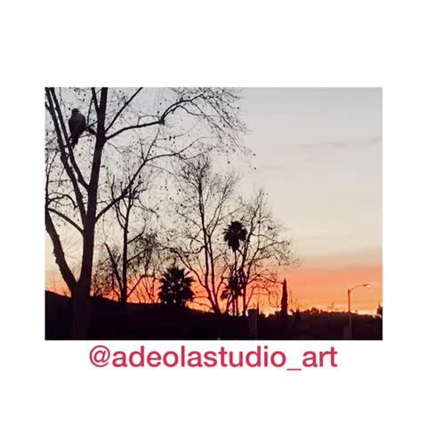 6-adeola-davies-aiyeloja-sunset-dance-mov