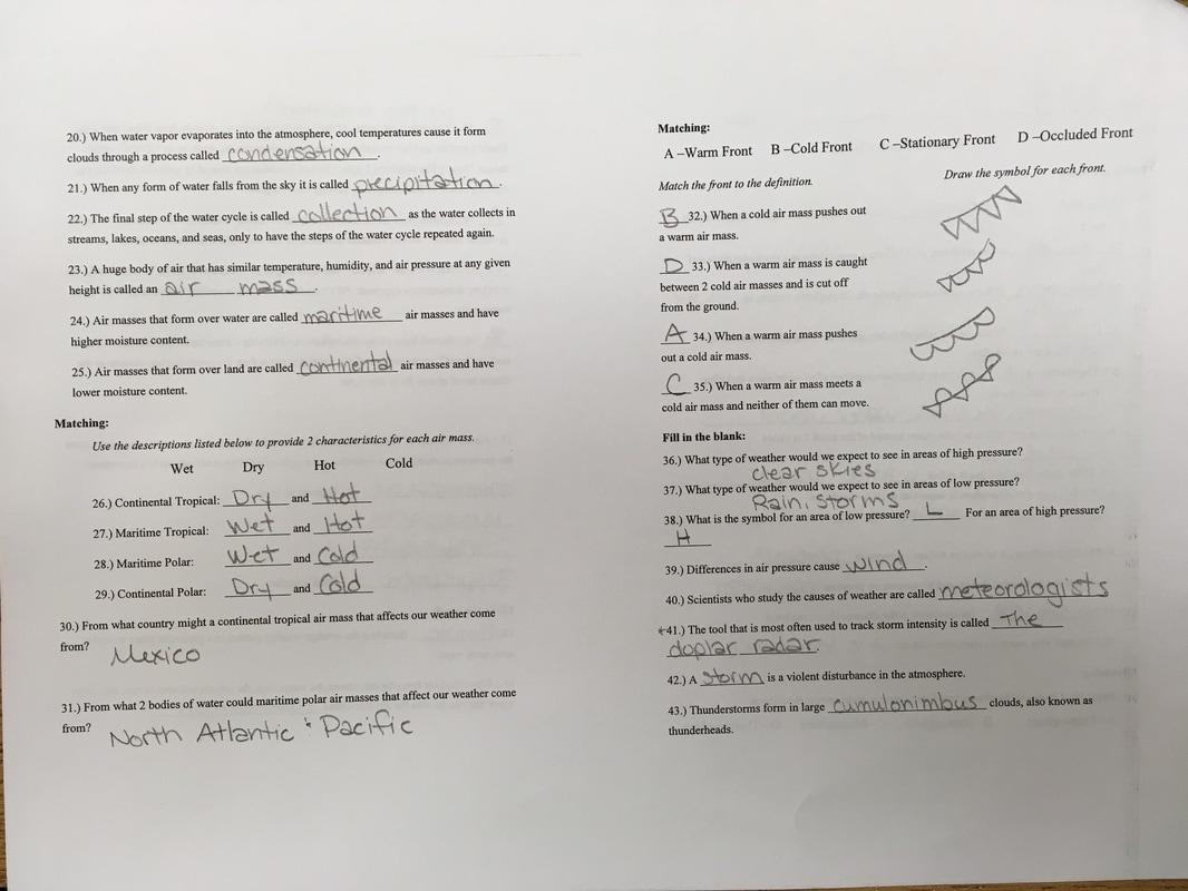 Osmosis Worksheet Doc