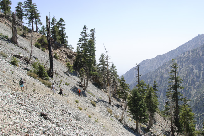 Switchbacks to the Summit