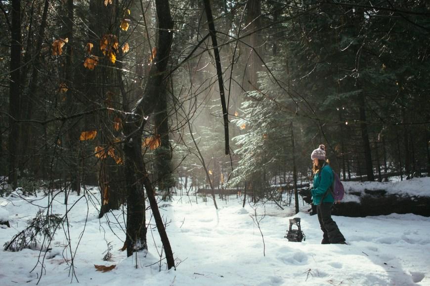 YOSEMITE_SNOW