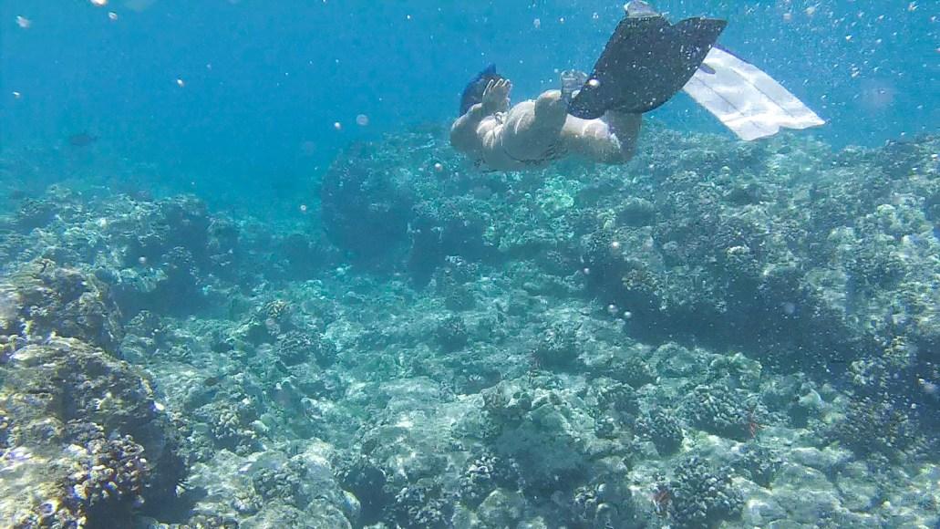 Chrissi Hernandez_chrissihernandez-hawaii-maui-01