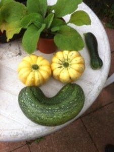cropped-smiley-veg-small.jpg