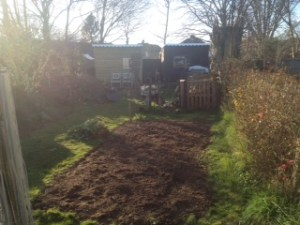 Fancy sheds and newly rotovated veggie patch