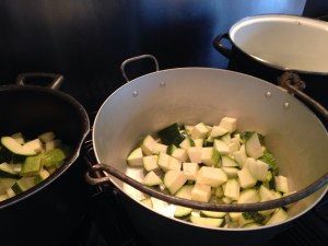 Chopped up the veg...