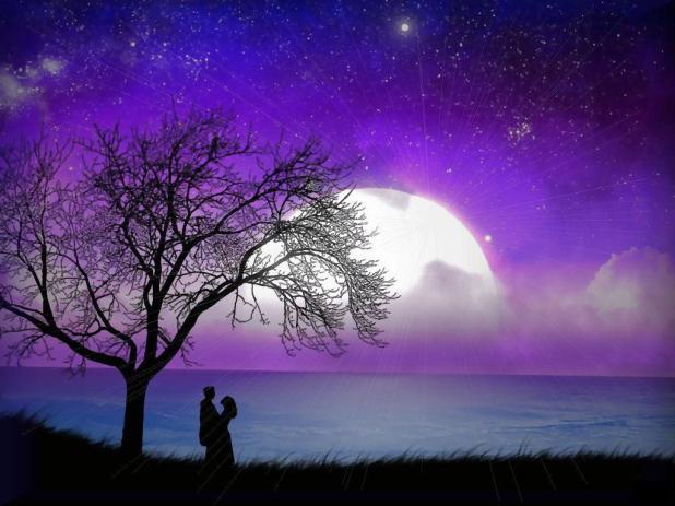 str ly.com 1389826495 219 صور حب تحفه , احدث صور عيد الحب تجنن