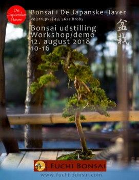 poster2018-dejapanskehaver