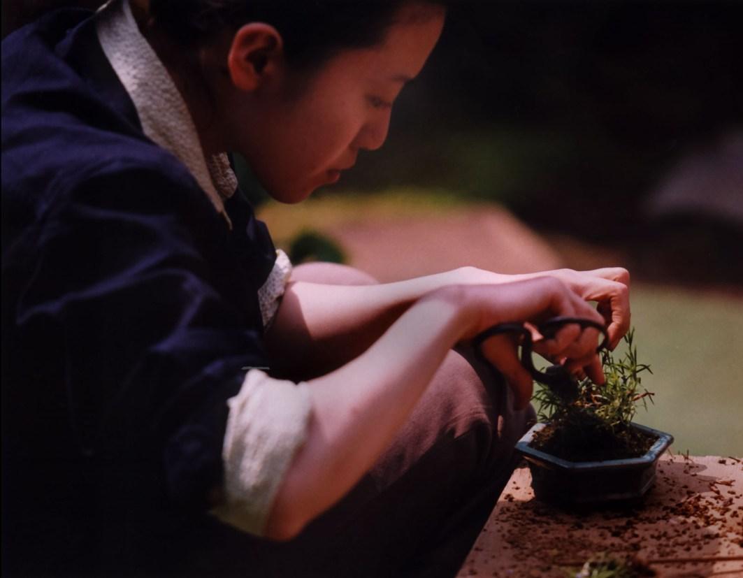 Pige laver plante