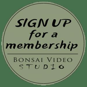 membership-500