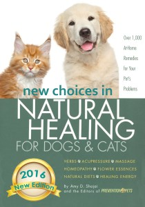Natural Healing book cover