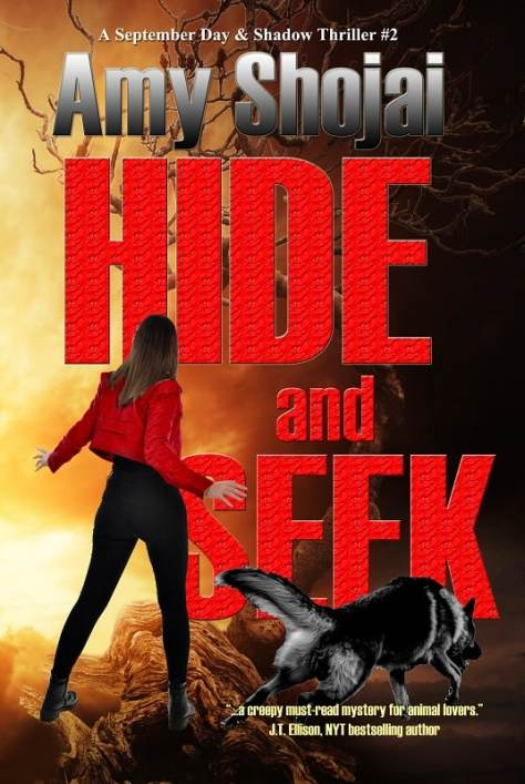 Hide And Seek: A September Day & Shadow Thriller #2