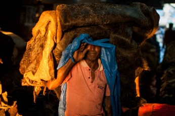 An worker peeks from under his load of raw hide that he was carrying inside the tannery.
