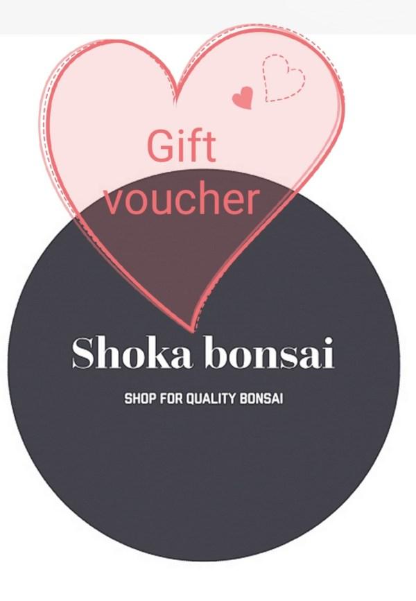Shoka Bonsai Gift Voucher