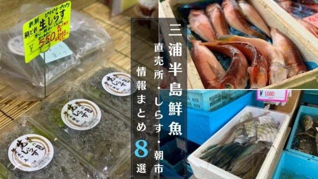 三浦半島鮮魚直売所まとめ