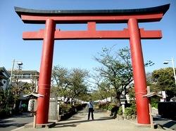 二の鳥居から鶴岡八幡宮へと狭くなる段葛の道幅