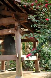 鎌倉瑞泉寺の椿