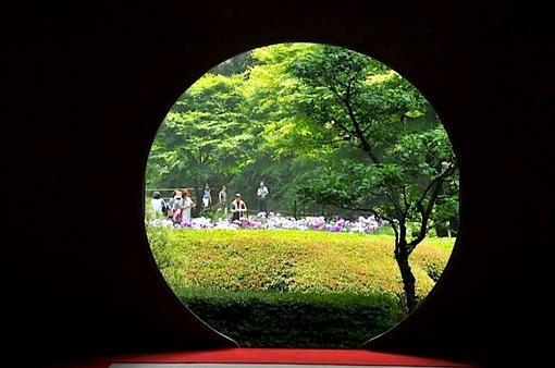 北鎌倉の明月院の円窓からの菖蒲畑