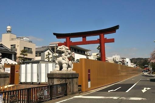 湘南・鎌倉桜花チェック2015:鶴岡八幡宮の源平池は今週末まで