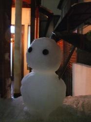 藤沢の初雪