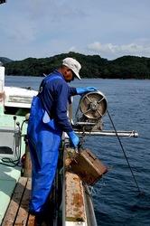 湘南藤沢から五島列島へ若松島の蛸壺漁