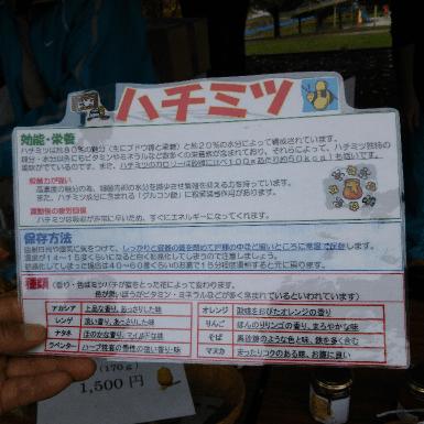 20151115_2