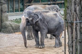 Karlsruhe Zoologischer Stadtgarten