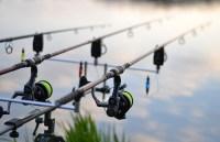 fishing-3302535_960_720