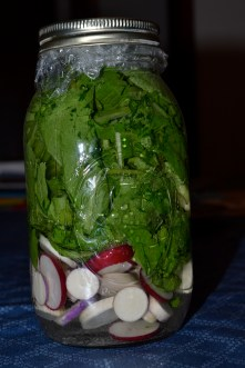 Pickled turnip and radish greens