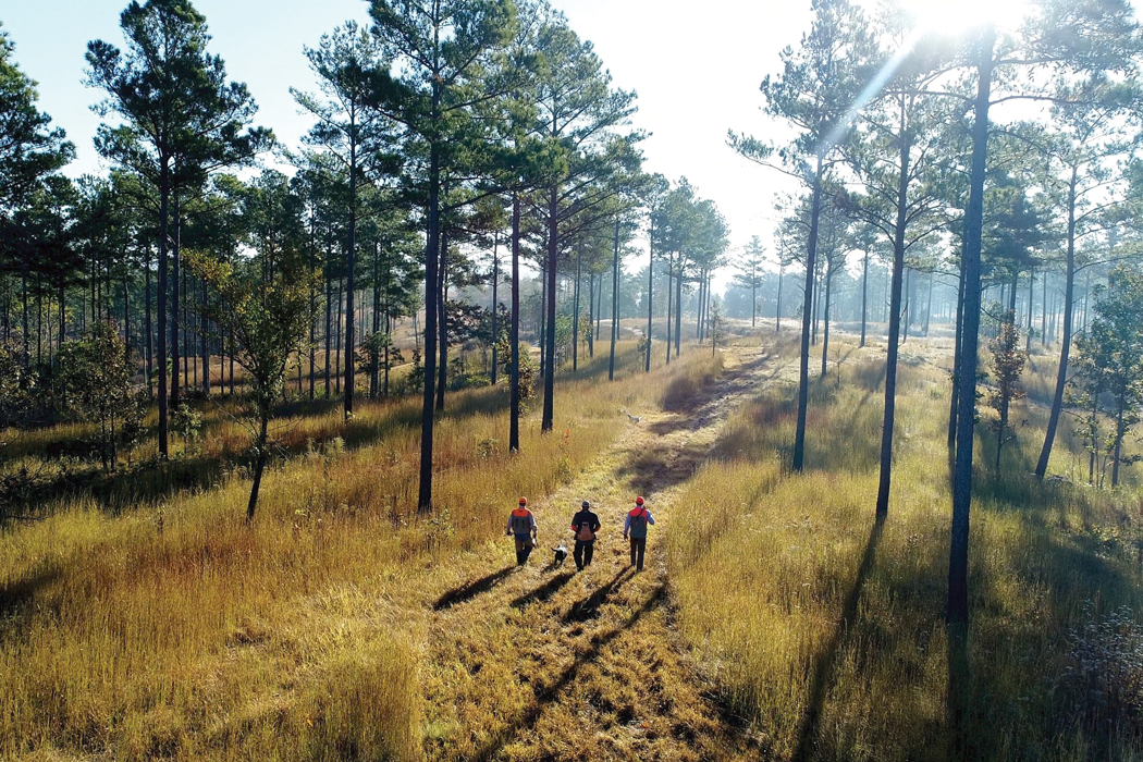 High Adventure Shooting Grounds Opens