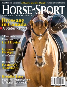 Horse Sport Cover