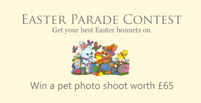 Easter Contest Image