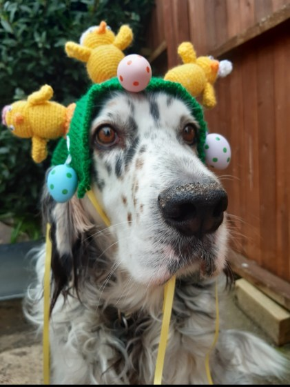 Skipper's Easter Bonnet