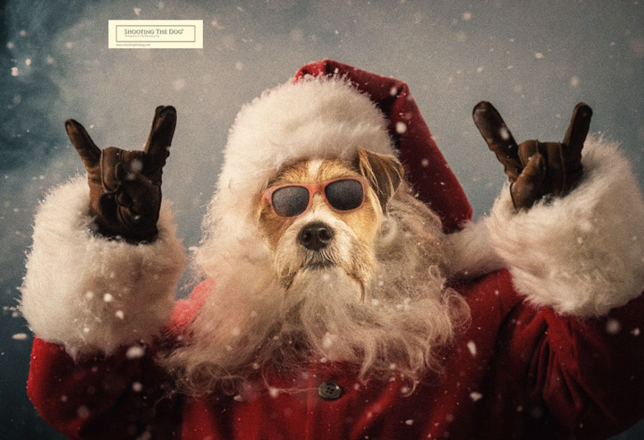 Christmas Card Mini-Shoots