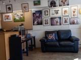 The New Studio Layout