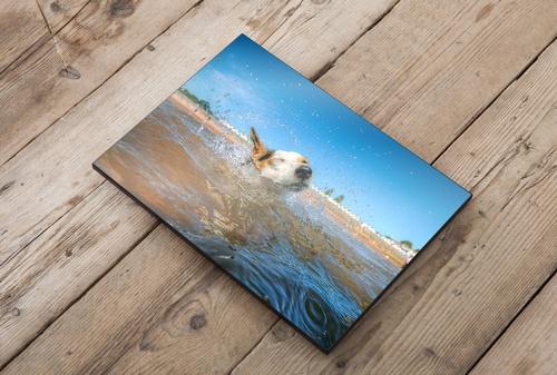 Acrylic Gallery Panels