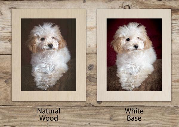 Birchwood Panels natural or white base