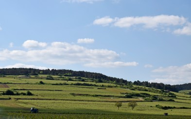 Traveling from Beaune to Pommard in Burgundy, France.