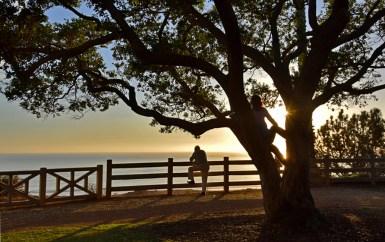 SunsetSMonWeb_DSC0942