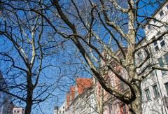 Central Munich. Kaufingerstrass.