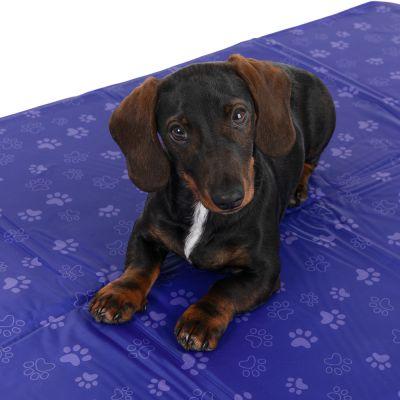 tapis rafraichissant premium pattes pour chien et chat
