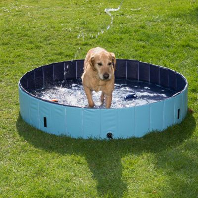 Dog Pool  Piscina per cani l zooplus