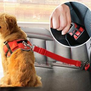 Ceinture de sécurité réglable pour votre chien